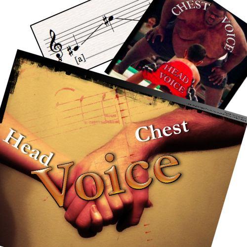 Vocal Technique: The Flex   The Countertenor Voice